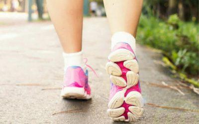 Il 20 agosto c'è la 9° Camminata per Torri e Dintorni