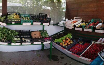 Il negozio di Mater Naturae aperto per tutta estate